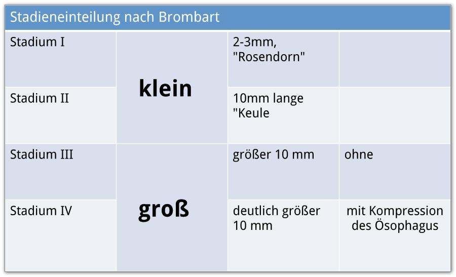 Stadioneinteilung nach Brombart